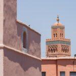 czerwone budynki marrakesz w tle meczet